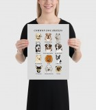 Common Dog Breeds Poster