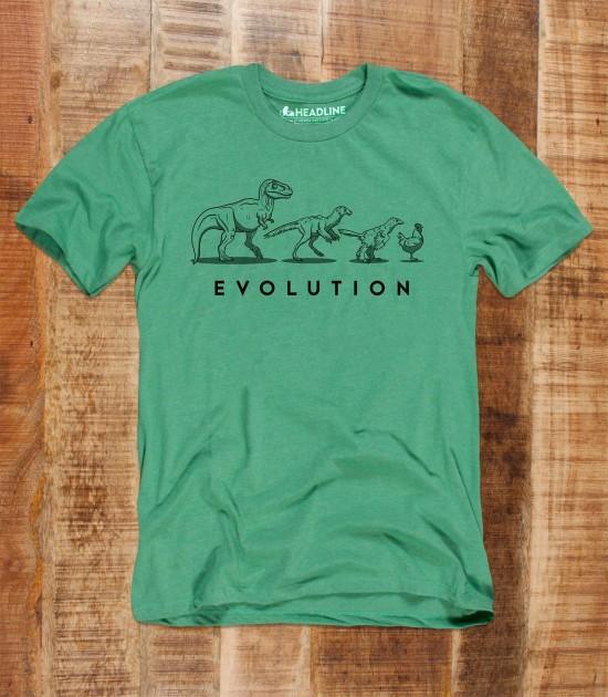 Evolution of the Dinosaur