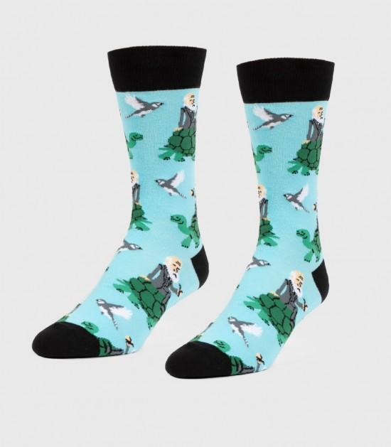 Darwins & Tortoises Unisex L/XL Socks