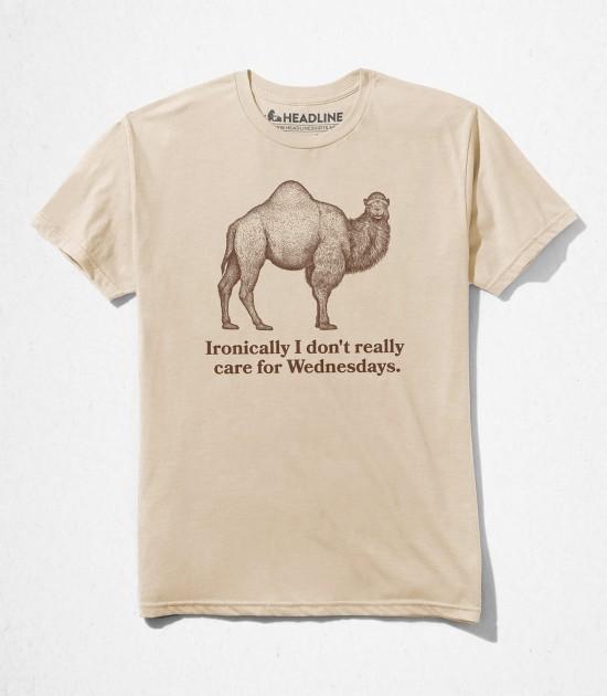 Ironic Camel