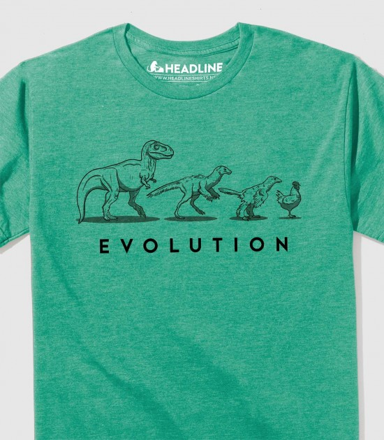 Evolution of the Dinosaur