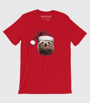 Santa Sloth (Special Order)