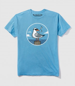 Bad Seagull