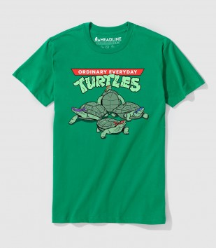 Ordinary Everyday Turtles